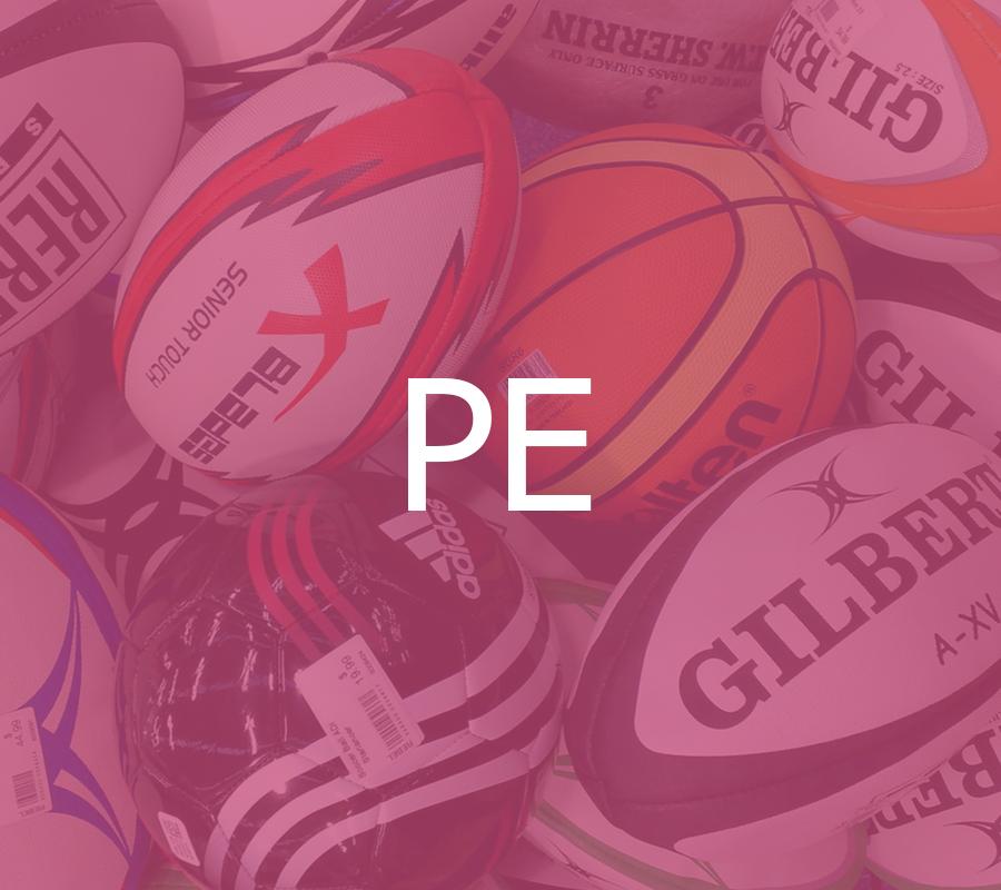 PE 2016